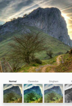 Ejemplo de diferentes filtros aplicables a las fotografías.