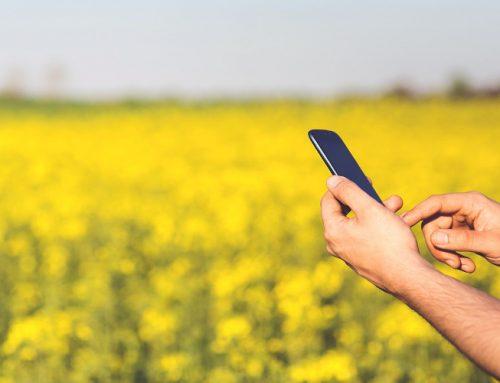 Combate tus alergias primaverales con las mejores apps